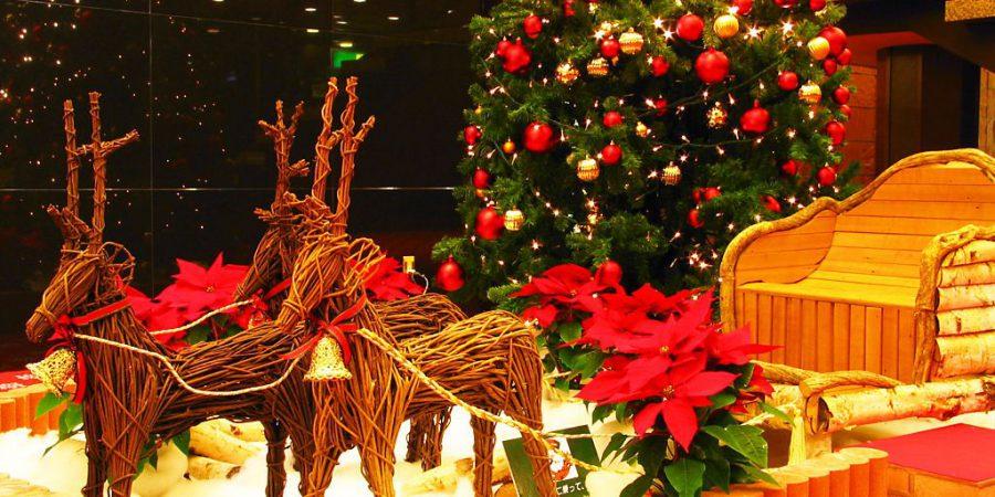 コスモス病棟 クリスマス会